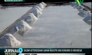 dilema ketersediaan garam industri dan konsumsi di indonesia