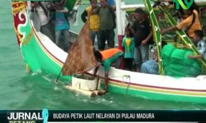 BUDAYA PETIK LAUT